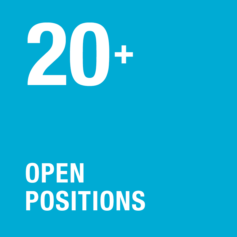 20+ open positions available