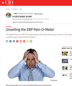 Unveiling the ERP Pain-O-Meter